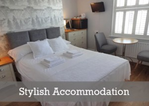 Stylish Rooms at the Aquarium Guest House