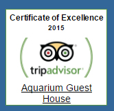 Aquarium Guest House on Tripadvisor